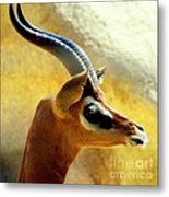 Gazelle Metal Print by Karen Wiles
