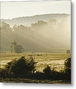 Geese Mist And Sun Metal Print