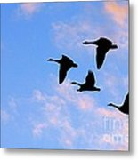 Geese Silhouetted At Sunset - 2 Metal Print
