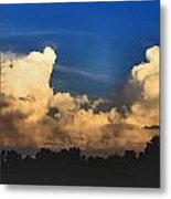 Gentle Giants Metal Print