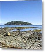 Georgeson Island Metal Print