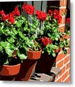 Geraniums In Germany Metal Print by Carol Groenen
