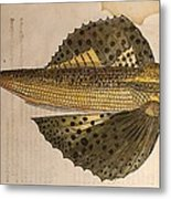 Gesner Flying Fish Old Illustration Metal Print