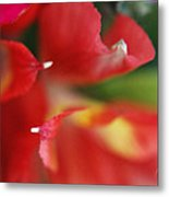 Get To The Point Metal Print