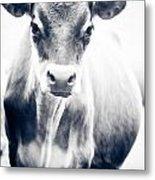 Ghost Cow 1 Metal Print