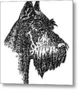 Giant-schnauzer-portrait Metal Print