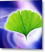 Ginkgo Leaf Metal Print by Pasieka