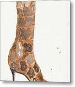 Giraffe Boot Metal Print