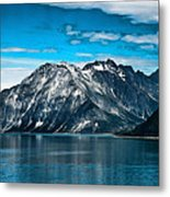 Glacier Bay Alaska Metal Print