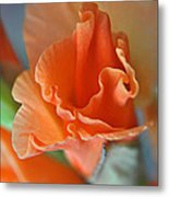 Gladiola Bloom Metal Print