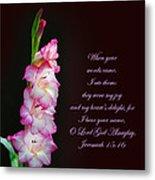 Gladiola Jeremiah 15 16 Metal Print