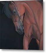 Glance Of A Horse Metal Print