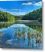 Glassy Waters Metal Print