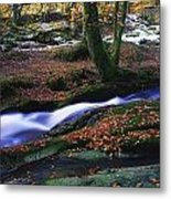 Glenmacnass Waterfall, Co Wicklow Metal Print