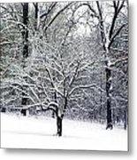 Glenna's Dogwood In The Snow Metal Print