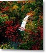 Glenoe Waterfall And Glen, Co Antrim Metal Print