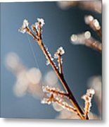 Glistening Ice Crystals Metal Print