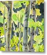Glittering Poplars Metal Print