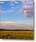 Glorious Life Metal Print