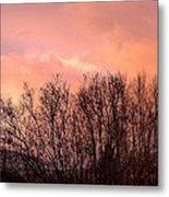 Glow Of A Winter Sunset Metal Print