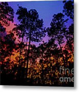 Glowing Forest Metal Print