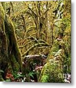 Gnomes In The Rainforest Metal Print