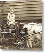 Goat Wagon Metal Print