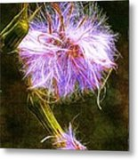 Going To Seed Metal Print