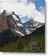 Going To The Sun Mountain Glacier National Park Spring Tree Larry Darnell Metal Print