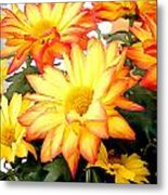 Gold And Red Autumn Mums Metal Print