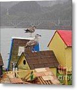 Gold Beach Gulls Metal Print