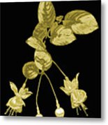 Gold Fuchsia Flowers On A Black Background Metal Print