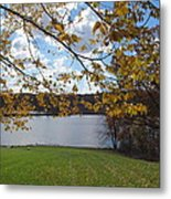 Gold Leaves On The Hill Metal Print