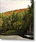 Gold Trimmed Trees Metal Print