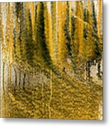 Golden Autumn Forest Metal Print