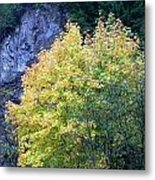 Golden Fall Metal Print
