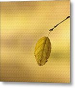 Golden Hue Metal Print