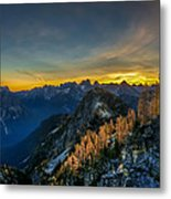 Golden Larch Metal Print by Ian Stotesbury