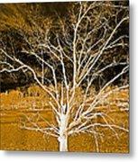 Golden Magical Tree Metal Print