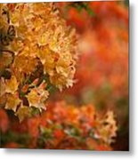 Golden Orange Radiance Metal Print