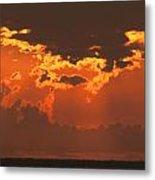 Golden Orange V5 Metal Print