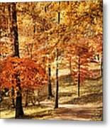 Golden Path Metal Print