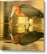 Golden Reflection Metal Print