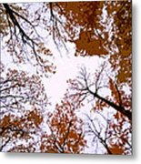 Golden September ... Metal Print