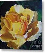 Golden Showers Rose Metal Print