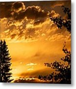 Golden Sky 2 Metal Print by Kevin Bone