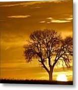 Golden Sunrise Silhouette Metal Print