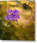 Golden Violets Metal Print