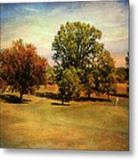 Golf Course II Metal Print