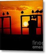 Goodnight Gulls Metal Print by Karen Wiles
